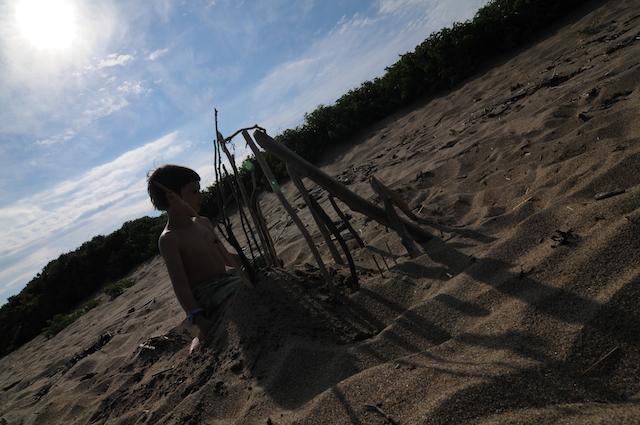 Shore (6)