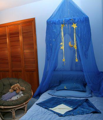 Sarahs-silks-canopy-celestial