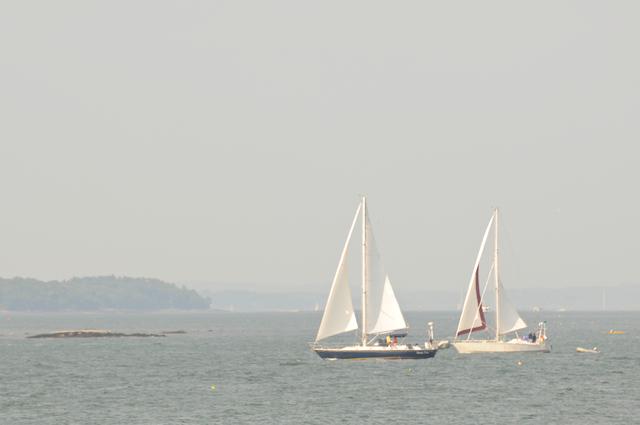 Sea (7)