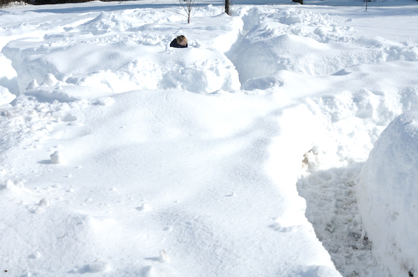 Winter (9)