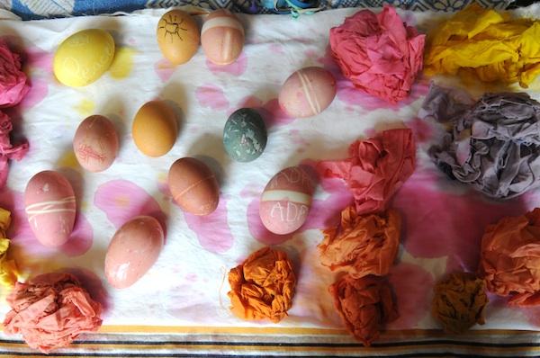 Eggs (9)