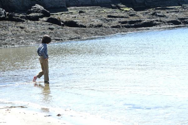 Shore (2)