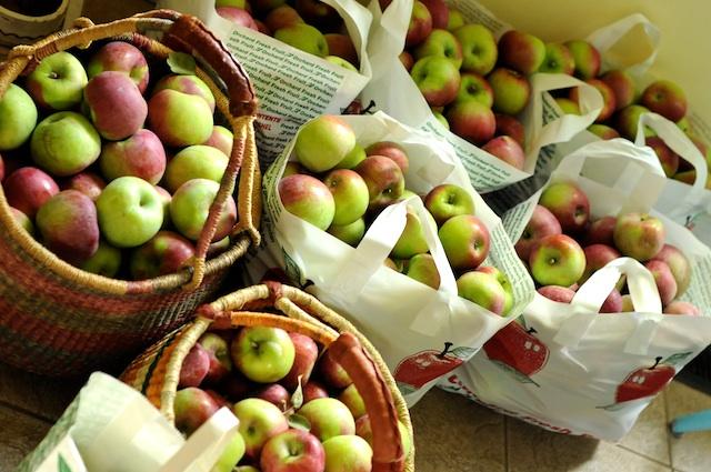 Apples (20)