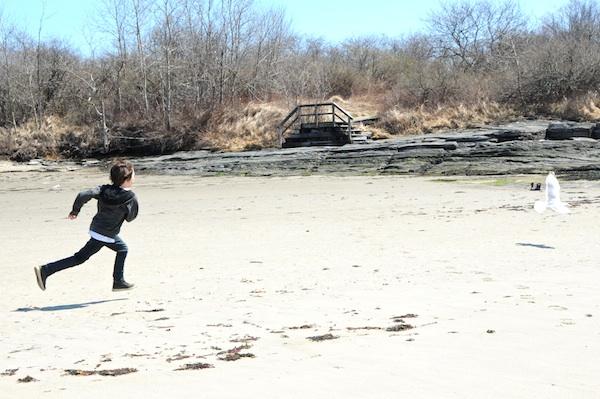Shore (1)