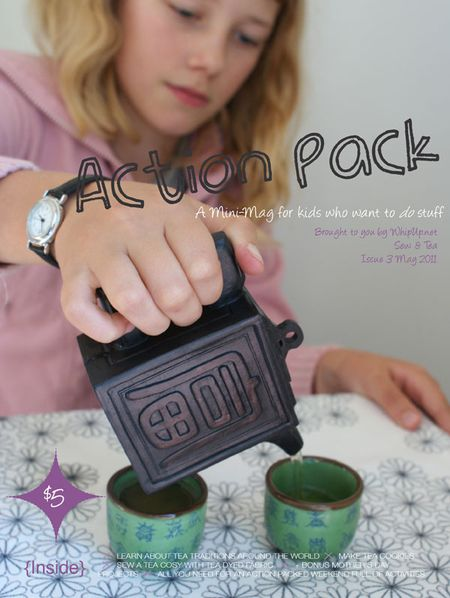 Whipup.ActionPackMayIssue3.COVER.600px
