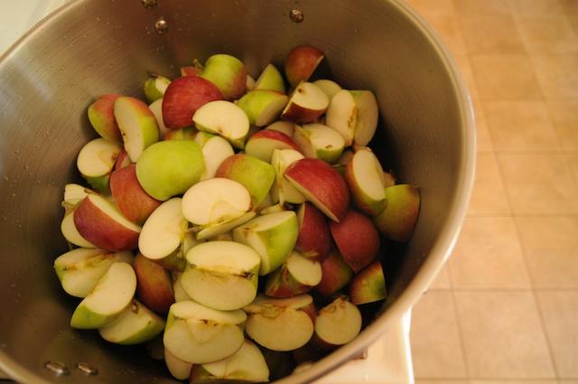 Apples (21)
