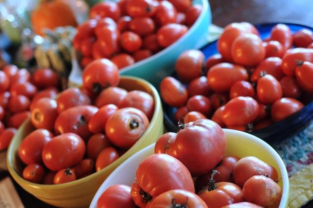 Harvest (1)