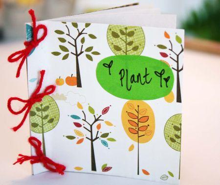 Seed book 1