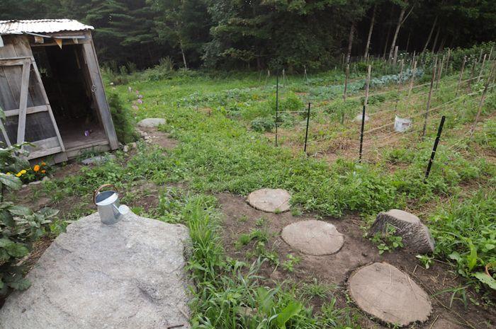 Garden-1-11