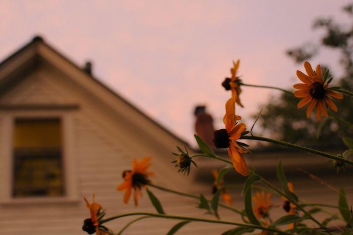 Summer (6)