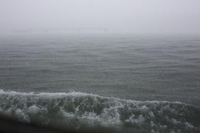 Ferry-14