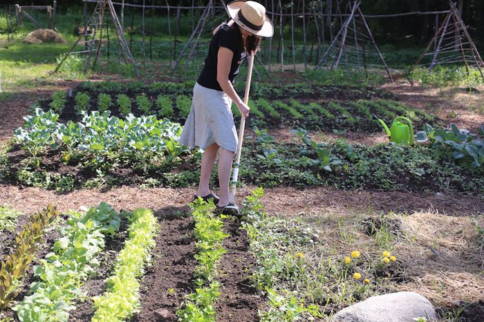 Gardenjune13-14