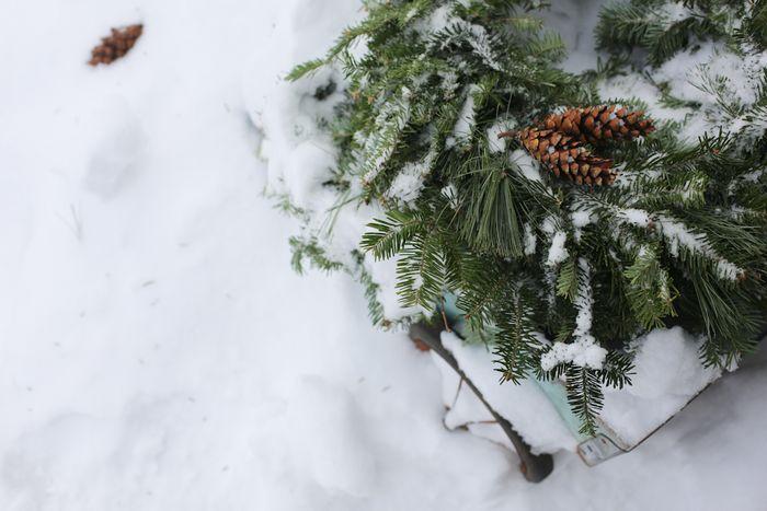 Snowyweekend-11
