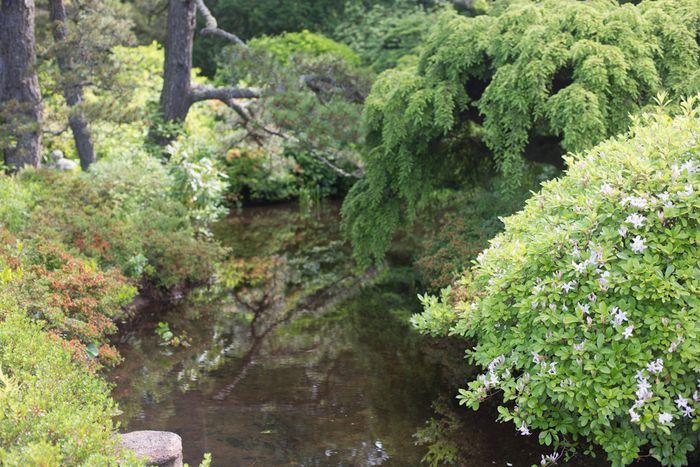 Gardens-5