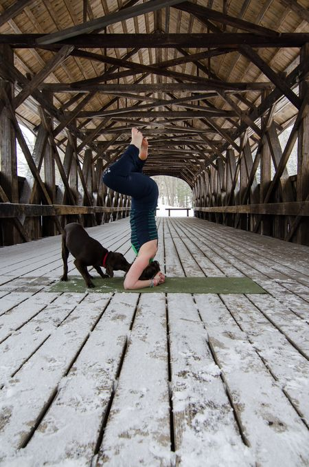 Headstand with pup