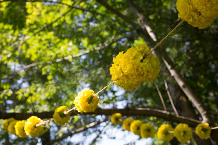 Flowers-1-5
