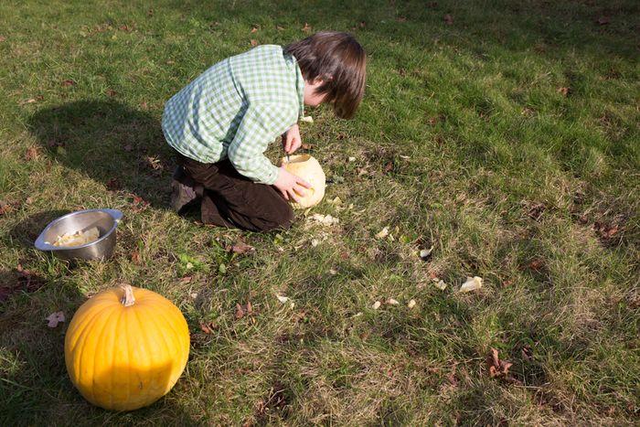 Pumpkins-2
