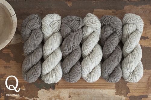 Chickadee-brown-heathers-500px1