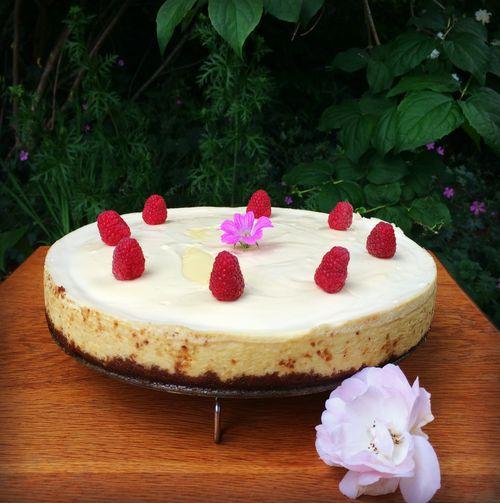 Cheesecake 1