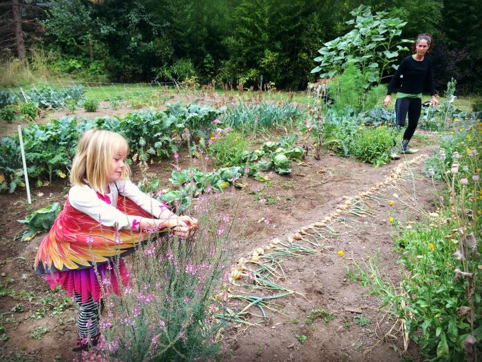 Amanda 2 fairies in the gardenjpg