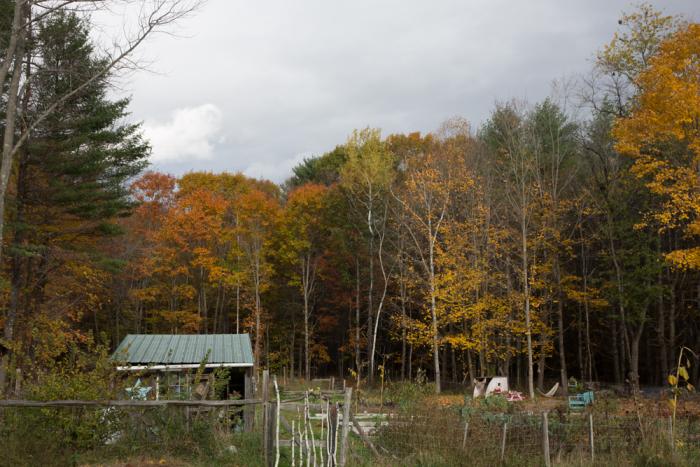 October-11-5