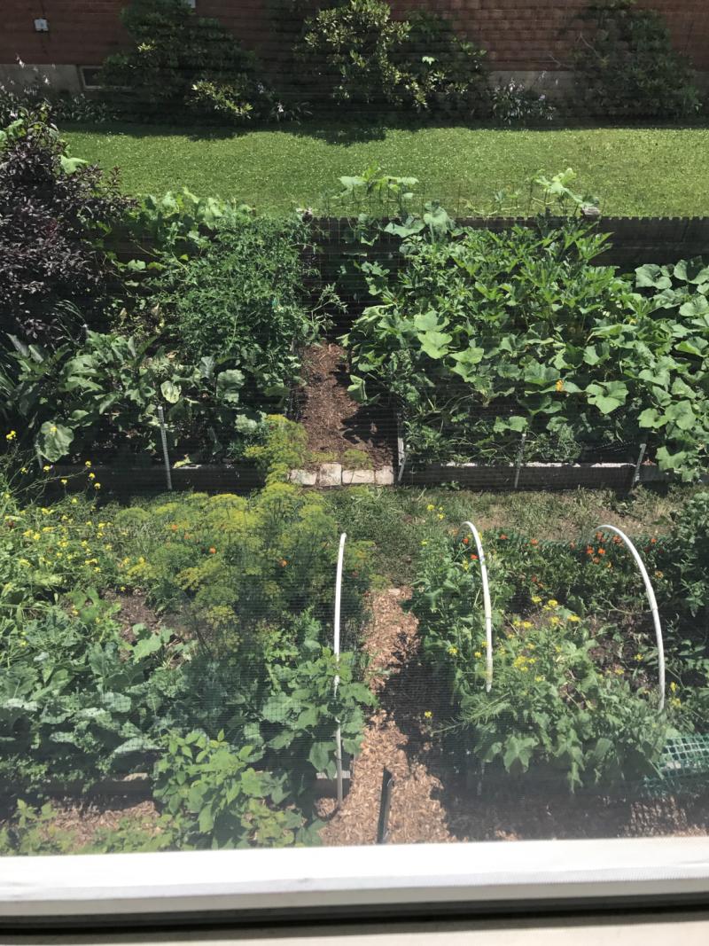 Jens garden-1
