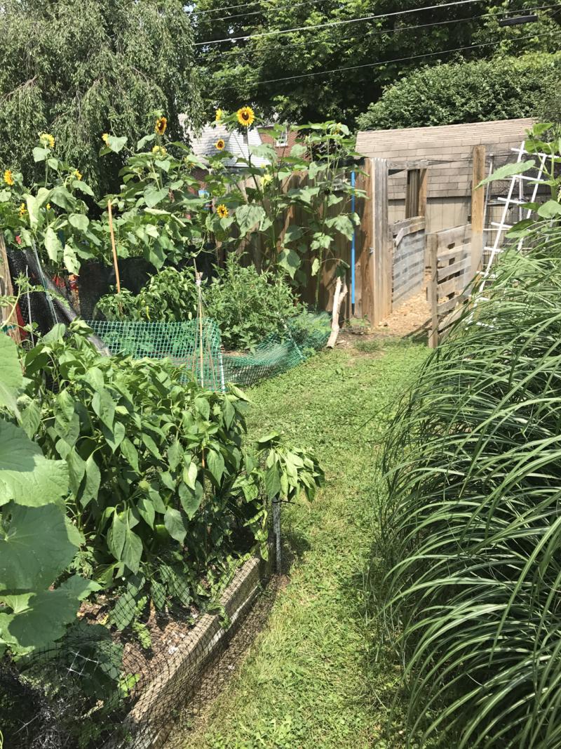 Jens garden-5