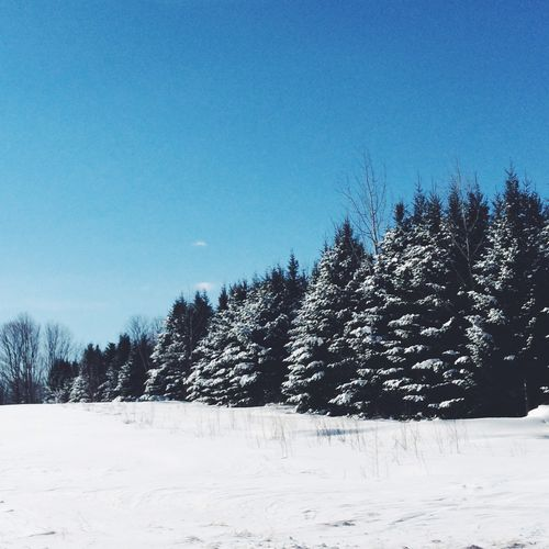 Feb-1