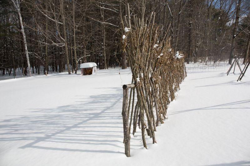 Snowystate-3