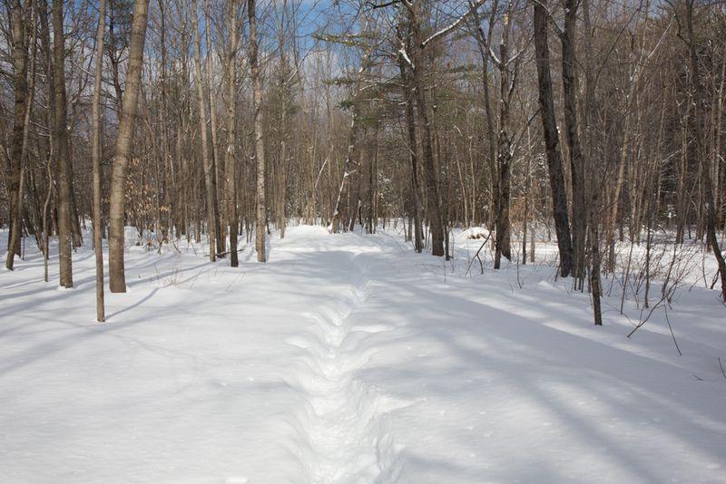 Snowystate-15