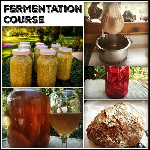 Fermentation course banner