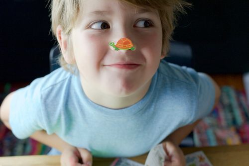 Atticus-sticker-on-nose-looking-right