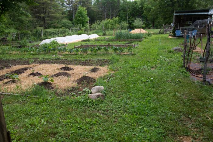 Garden23-9