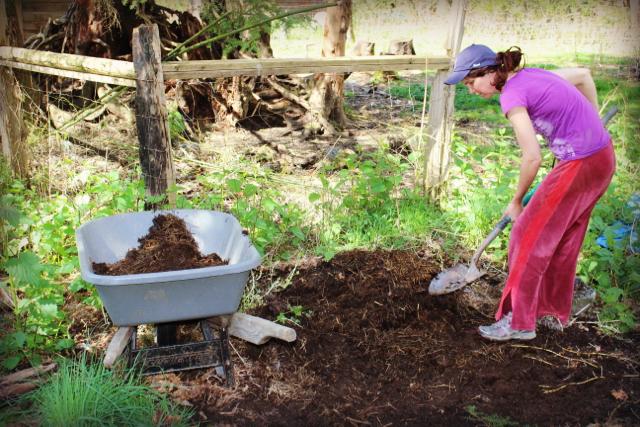 Amanda 4 my homemade compost