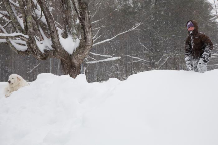Snow-1-11