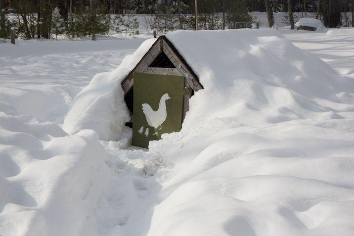 Snowystate-17