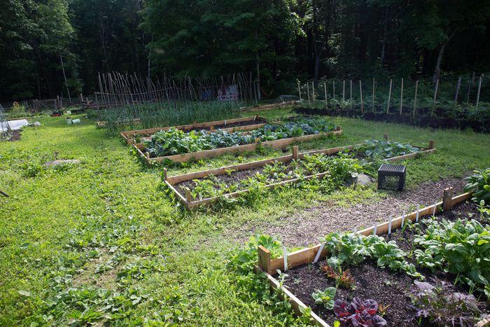 Garden19-10