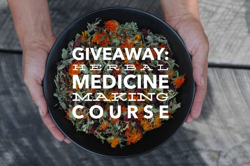 Online Herbal Medicine Making Course 3