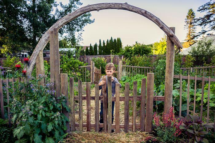 Fence_gate