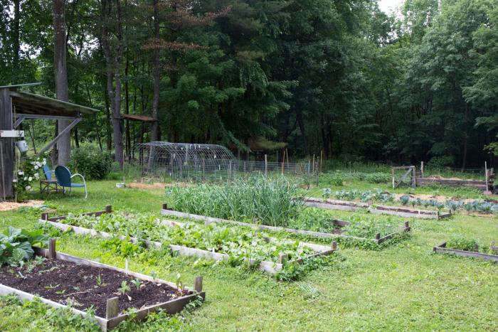 Garden23-3