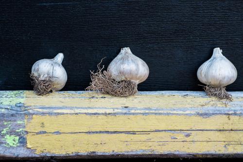 Garlictown-0029