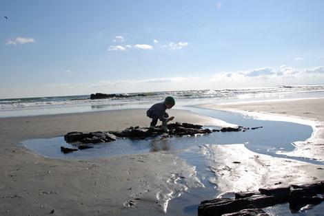 Shore4